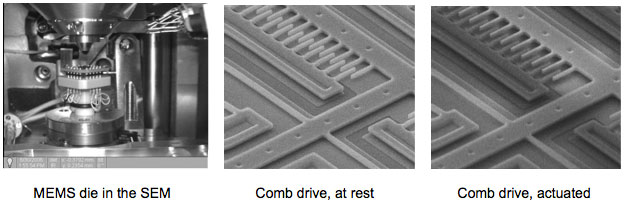 Comb drive actuator displacement, and levitation due to fringe fields, observed in the SEM